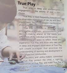what is true play? by Denisha Jones